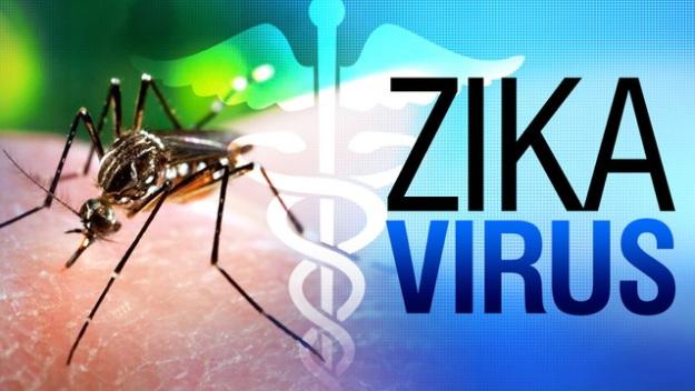 zika20virus201280x720_1454952100204_1357325_ver1-0_640_360